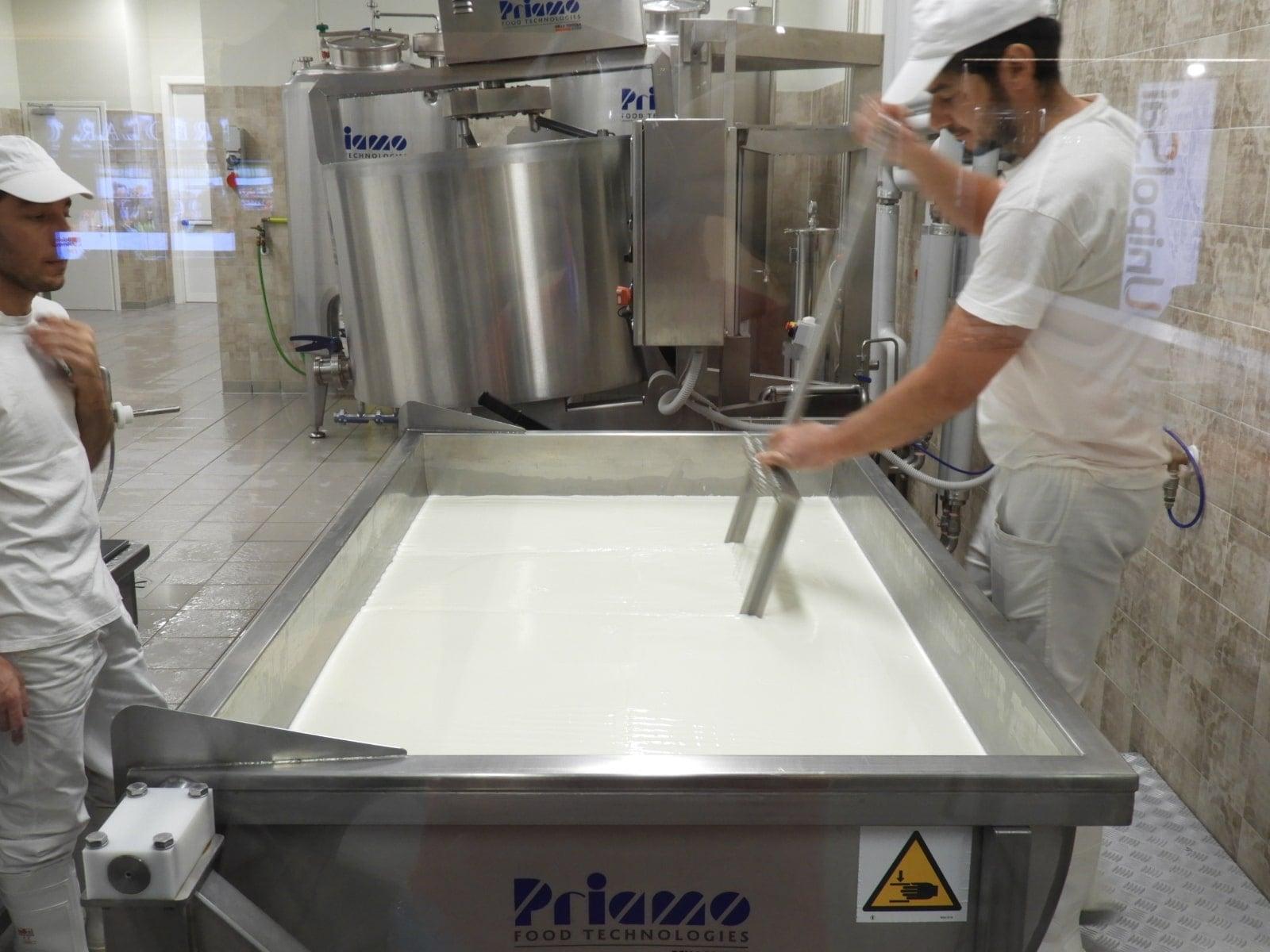 cheesemaking Italy