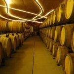 wine Cellars Sardinia